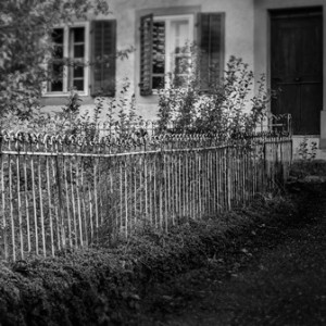 Black and white photo of cottage windows and garden