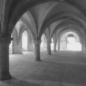 Upland Consulting: Not-for-Profit Governance: Photo of Fontenay Abbey